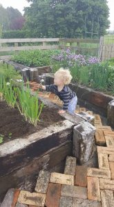 child leaning into planter box with plants