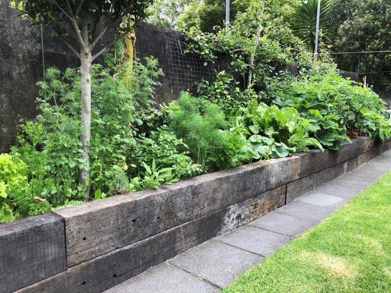 railway sleeper planter box with garden behind