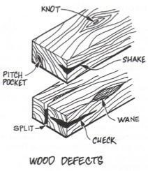 diagram of characteristics (defects) in timber