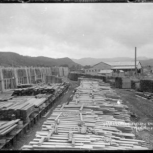 800px-Ellis_and_Burnand's_timber_yard_and_veneer_factory_at_Manunui_(21675293041)